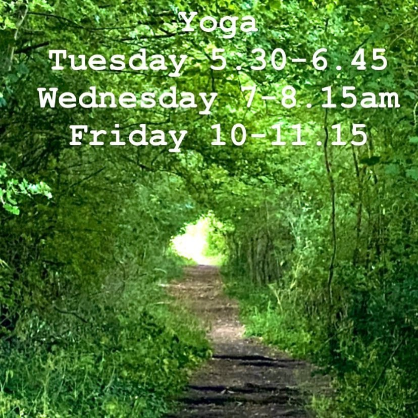 Oxford Yoga - Forest Path
