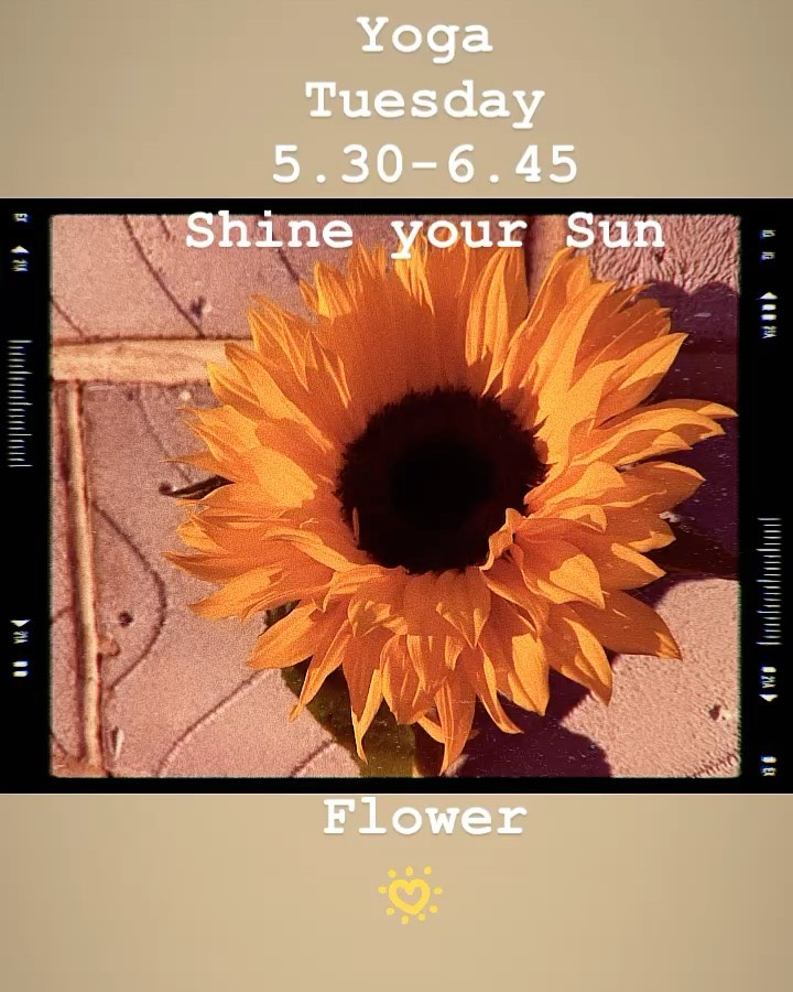 Oxford Yoga - Sun Flower